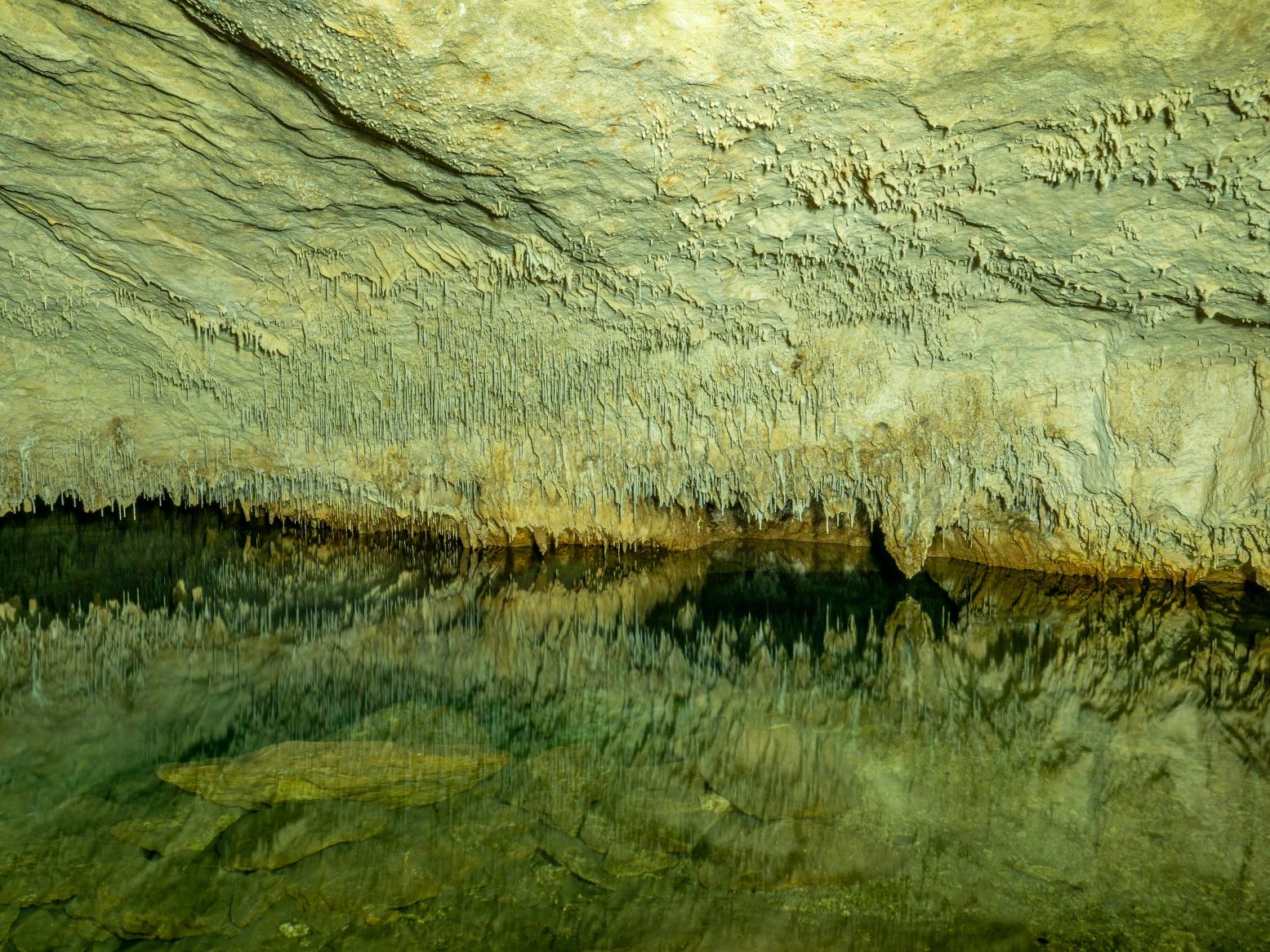Cova d en Besso o Genovesa (Mallorca)